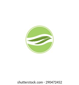 Aloe vera and drop vector illustration, template logo. Company logo design
