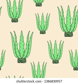 Aloe vera flower pot on yellow background. Graphic image. Nice picture. Gift wrap. Vector illustration.
