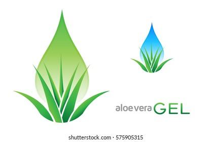 Aloe vera gel logo, label, badge. Aloe vera plant icon vector with green leaves. Healthy aloe gel or juice concept.