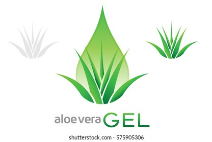 Aloe vera gel logo vector. Icon of an aloe plant with green leaves and drop of juice or gel.
