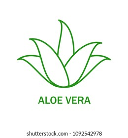 Aloe vera icon isolated on white background. Aloe vera flat icon for web site,app,banner and logo. Userful for poster,ads, label, emblem and badge. Creative art concept, vector illustration, eps 10