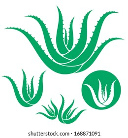 Aloe vera. Icon set. Isolated aloe on white background