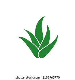 aloe vera icon vector logo template
