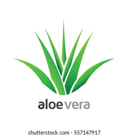 Aloe Vera with leaves logo, label, badge - Design for Products - Isolated