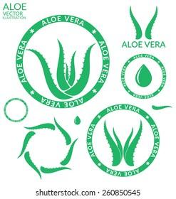 Aloe Vera. Logo. Isolated aloe plant on white background. Vector illustration