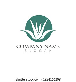 Aloe vera logo and symbol vector