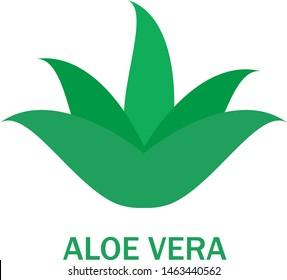 Aloe vera logo vector. Icon isolated on white background. Aloe vera flat logo style for sticker, label, leaf icon and element design. Aloe vera green plant, vector illustration