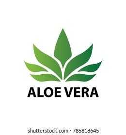 Aloe vera nature leaf icon , logo vector illustration