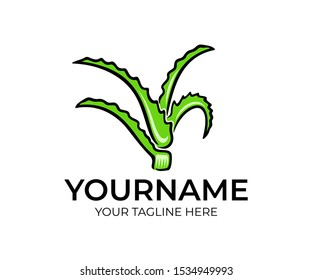 Aloe vera plants, logo design. Nature, aloe leaves, cosmetic and medical mean, vector design and illustration