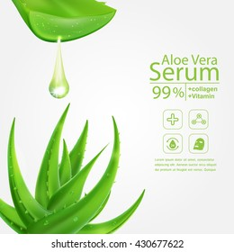 Aloe Vera Serum and Collagen Vitamin Skin Care Cosmetic Background Vector Concept .