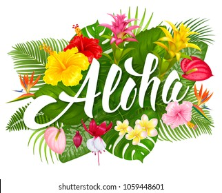 Aloha hawaii hand drawn lettering tropical stock vector royalty aloha hawaii hand drawn lettering and tropical plants leaves and flowers hawaiian language greeting m4hsunfo