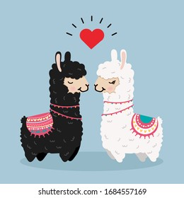 alpaca couple in love vector