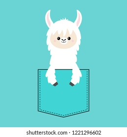Alpaca llama face and hand in the pocket. T-shirt design. Cute cartoon funny character. Kawaii animal. Love Greeting card. Flat design style. Blue background. Isolated. Vector illustration