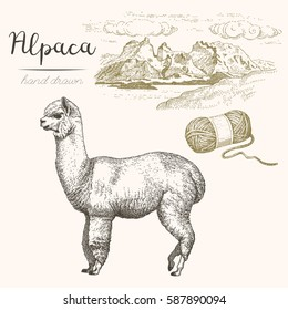 Alpaca. Set of vector sketches of alpaca and mountain landscape on a white background