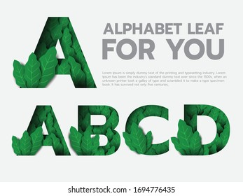 Alphabet leaf in green papercut included A-D. Graphic resource in natural concept for headline or typography.