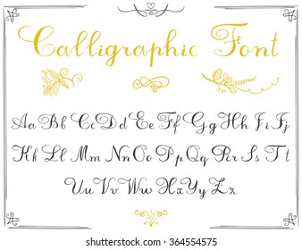 Alphabet letters, hand drawn calligraphy font. Vector alphabet. Hand written letters of the alphabet and decoration elements isolated on white background.