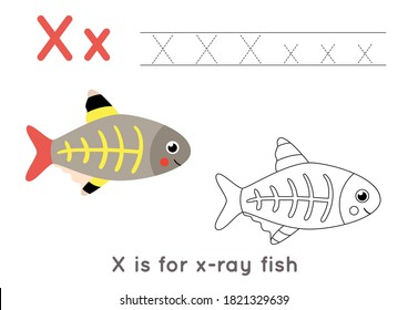 Alphabet tracing and coloring worksheet. A-Z writing pages. Letter X uppercase and lowercase tracing with cartoon x ray fish illustration. Handwriting exercise for kids. Printable worksheet.