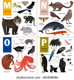 Alphabet vector design with cute animals: octopus, panda, owl, parrot, porcupine