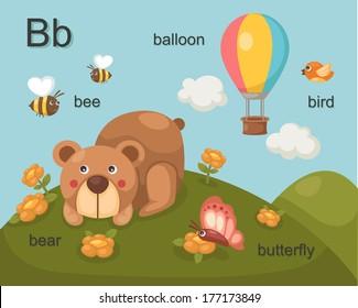 Alphabet.B letter.bee,bear,balloon,bird,butterfly.