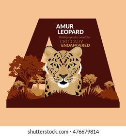 Alphabets of Critically Endangered Animals, Amur Leopard can be use for campaign to save our animals