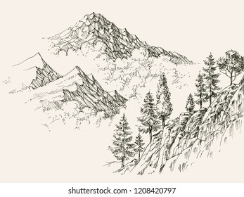 Alpine sketch, mountain ranges and coniferous vegetation