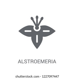 Alstroemeria icon. Trendy Alstroemeria logo concept on white background from Nature collection. Suitable for use on web apps, mobile apps and print media.