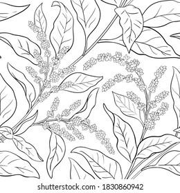 amaranth vector pattern on white background