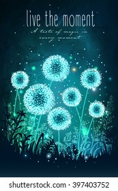 Amazing dandelions with magical lights of fireflies at night sky background. Unusual vector illustration. Inspiration card for wedding, date, birthday, holiday or garden party