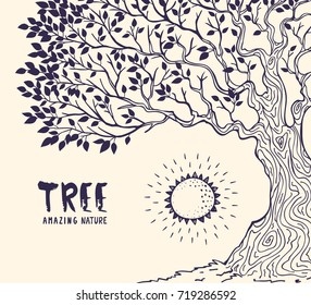 Amazing huge and beautiful tree with sun and sample text. Vector illustration, sketch