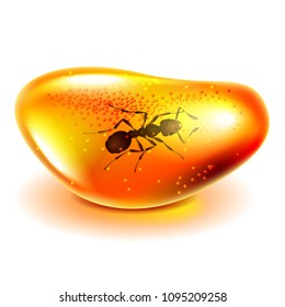 Amber with ant isolated on white photo-realistic vector illustration