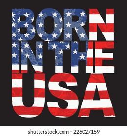 America design , typography, t-shirt graphics, vectors