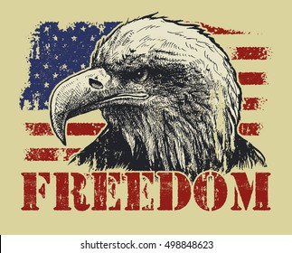 American Bald Eagle and Flag A sketchy bald eagle over an abstract, stylized American flag.
