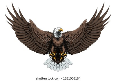 American Bald eagle vector illustration