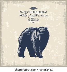 American black bear, Wildlife of America, illustration, vector, vintage