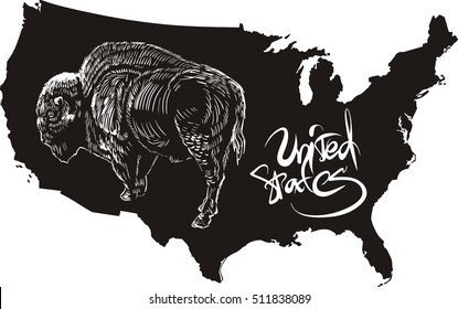 American buffalo and U.S. outline map. Black and white vector illustration. Bison bison.