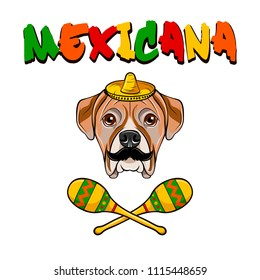 American Bulldog dog. Sombrero, Meracas, Mustache. Mexicana inscription. Mexico symbols. Vector illustration.