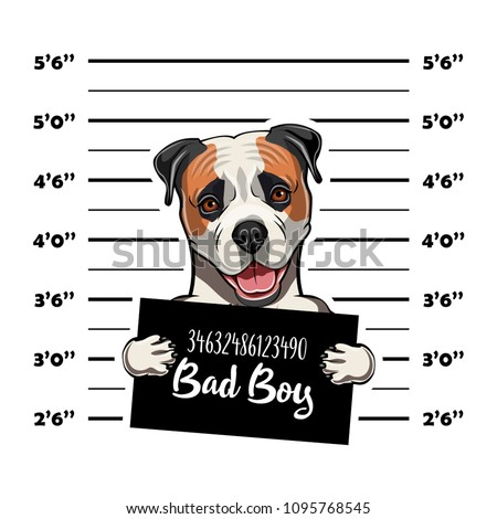 American Bulldog Prisoner Arrest Photo Police Vector de stock (libre ...
