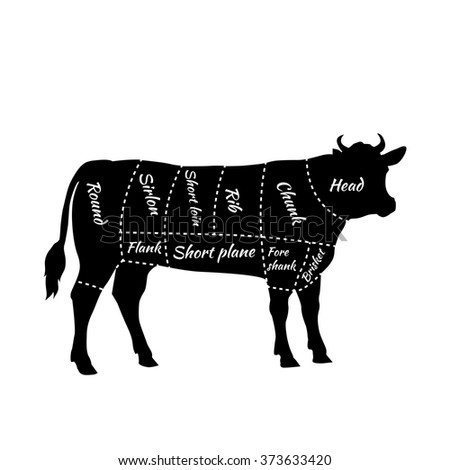 american cuts beef scheme beef cuts stock vector royalty free