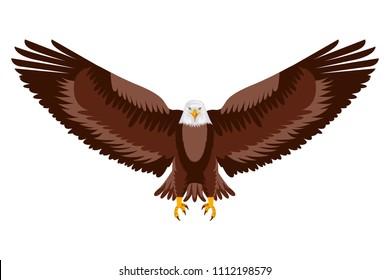 american eagle open wings bird