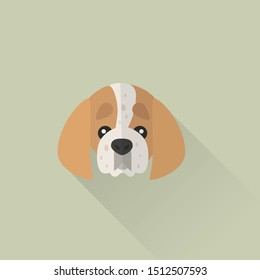 American English Coonhound Head Vector Flat Design Illustration from Front View for Website Icon, Social Media, Blog, T-Shirt and Greeting Card