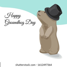 American Groundhog day. groundhog in hat and with shadow looks into sky, standing on snow. Picture in hand drawing cartoon style, for greeting card, party invitation