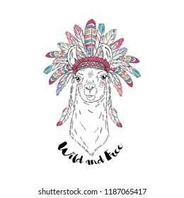 American Indian llama in war bonnet, t-shirt design