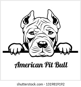 American Pit Bull - Peeking Dogs - breed face head isolated on white - vector stock