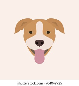 American Pitbull Terrier Portrait. Vector illustration portrait of Dog on white background.
