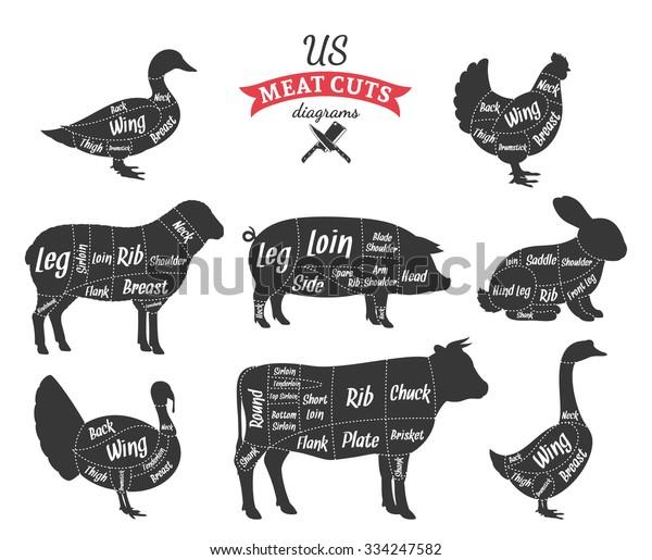 american us cuts beef pork lamb stock vector  royalty free  334247582