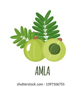 Amla icon in flat style isolated on white background. Indian gooseberry. Superfood amla medical fruit. Vector illustration.