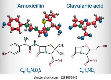 Amoxicillin and clavulanic acid drug molecule. Combination is an antibiotic useful for the treatment of a number of bacterial infections. Structural chemical formula and molecule model. Vector