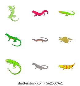 Amphibian reptile species icons set. Cartoon illustration of 9 amphibian reptile species vector icons for web