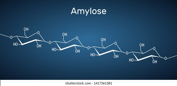 Amylose molecule. It is a polysaccharide and one of the two components of starch. Structural chemical formula on the dark blue background. Vector illustration