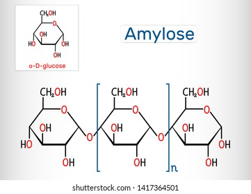 Amylose molecule. It is a polysaccharide and one of the two components of starch. Structural chemical formula. Vector illustration